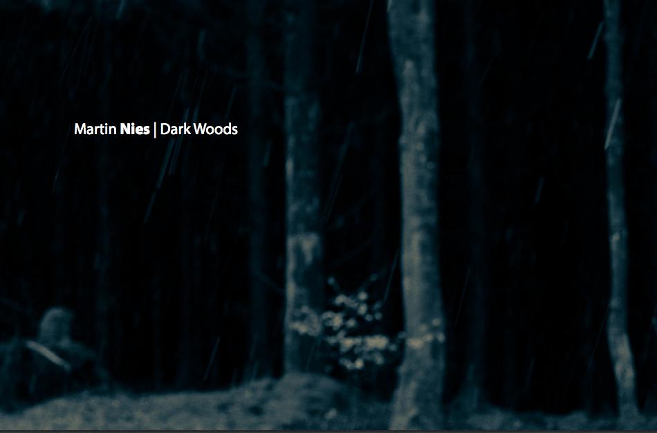 Dark Woods_Titel